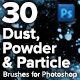 30 High Resolution Dust, Powder & Particle Brushes - GraphicRiver Item for Sale