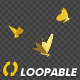 Golden Butterflies - Three Flying Around - Transparent Loop - VideoHive Item for Sale
