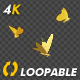 Golden Butterflies - Three Flying Around - Transparent Loop - 4K - VideoHive Item for Sale