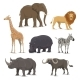 African Safari Animal Icons - GraphicRiver Item for Sale