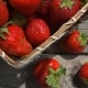 Basket with Ripe Strawberries Stands on a Table - VideoHive Item for Sale