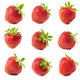 fresh red strawberries - PhotoDune Item for Sale