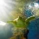 turtle are swimming in marine aquarium - PhotoDune Item for Sale