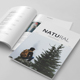 The Magazine - GraphicRiver Item for Sale