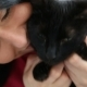 Love for Pets. Beautiful Dark-haired Girl with a Black Cat Is Relaxing at Home in the Bed Room - VideoHive Item for Sale