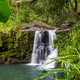 Waterfall in Hawaii - PhotoDune Item for Sale