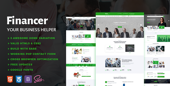 Image of Financer - Consulting Finance & Insurance Template