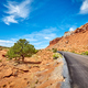 Picturesque road in the Capitol Reef National Park. - PhotoDune Item for Sale