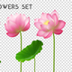 Lotus Flowers Realistic Set - GraphicRiver Item for Sale