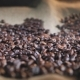 Coffee Beans Splash on Bagging - VideoHive Item for Sale