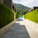 Modern houses with green plant wall - PhotoDune Item for Sale