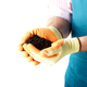 Farmer shows soil in his hands weared in gloves isolated on whit - PhotoDune Item for Sale