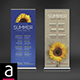 Concert / Events Roll Up Banners - GraphicRiver Item for Sale