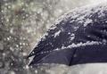 Snow flakes falling on umbrella - PhotoDune Item for Sale
