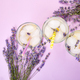 Lavender lemonade with lemon - PhotoDune Item for Sale