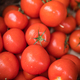 Fresh red organic tomatoes on sale - PhotoDune Item for Sale