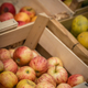Red and yellow apples for sale - PhotoDune Item for Sale