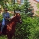 Horse Riding on the Ranch - VideoHive Item for Sale