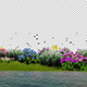 Flower Field Background - VideoHive Item for Sale
