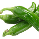 Padron peppers c. annuum, whole pods, top - PhotoDune Item for Sale