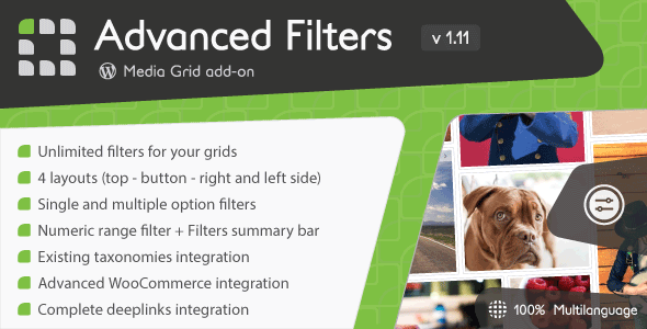 Media Grid - Advanced Filters add-on            Nulled