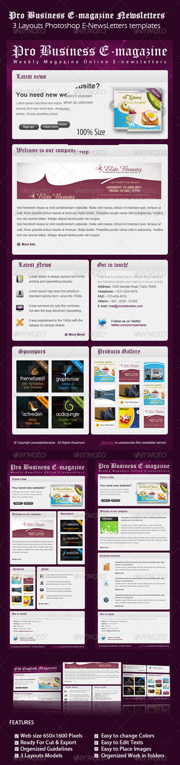 Professional Business E-Magazine newsletters - E-newsletters Web Elements
