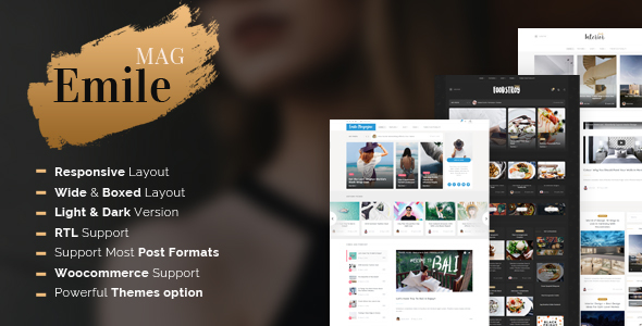 Image of Emile - Responsive WordPress Blog Theme With Shop