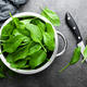 Spinach. Fresh spinach leaves - PhotoDune Item for Sale