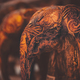 Beautiful wooden elephants - PhotoDune Item for Sale