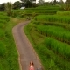 Young Woman and Her Son Walking Along Beautiful Rice Terraces on the Bali Island - VideoHive Item for Sale