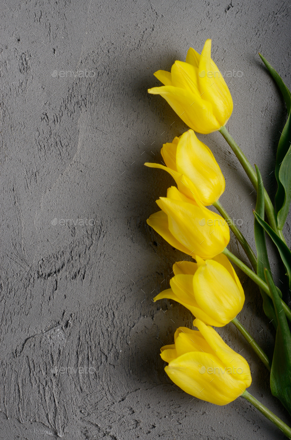 Yellow Beautiful Tulips On Grey Background With E For Text Stock Photo Images