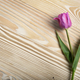 Bouquet of lilac tulips on natural wooden background with space - PhotoDune Item for Sale