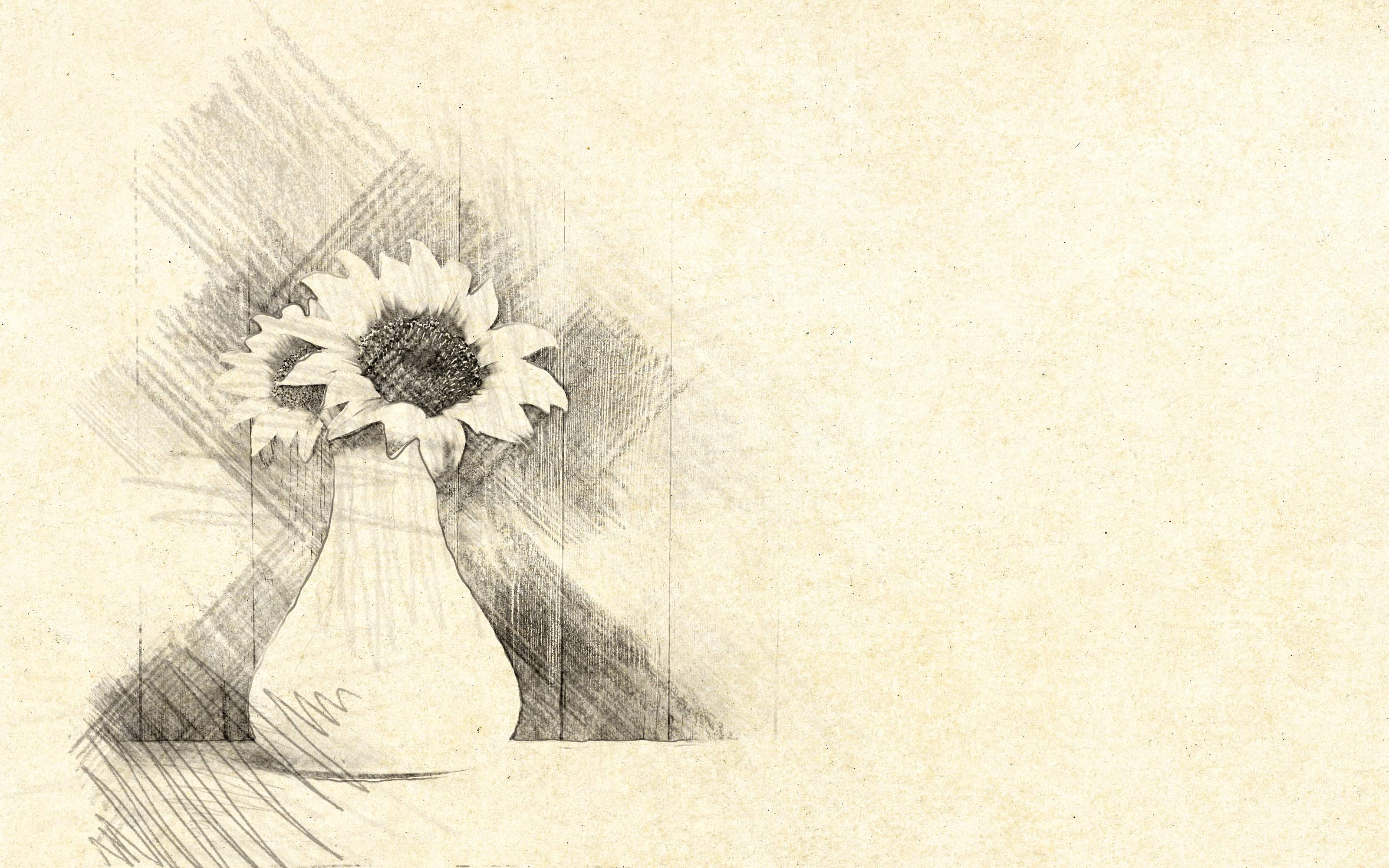 Artistic Sketch Drawing Action By Sikebogiraz Graphicriver