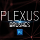 Plexus Brushes for Photoshop - Set A