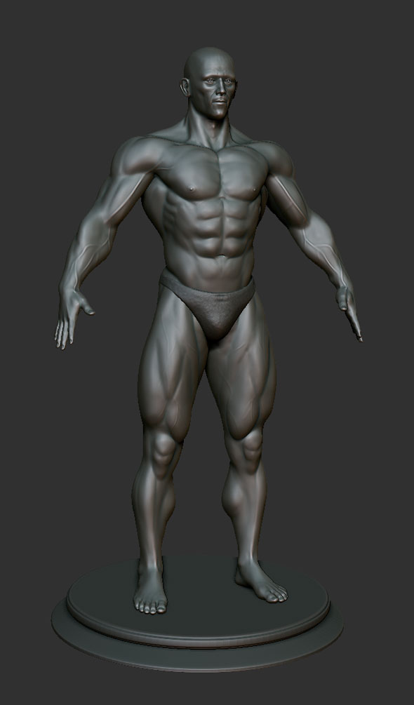 Muscular Man  Zbrush Sculpt - 3DOcean Item for Sale
