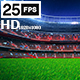 Flying On Grass In Stadium Night HD - VideoHive Item for Sale