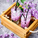 Refreshing drink with lilac and ice - PhotoDune Item for Sale