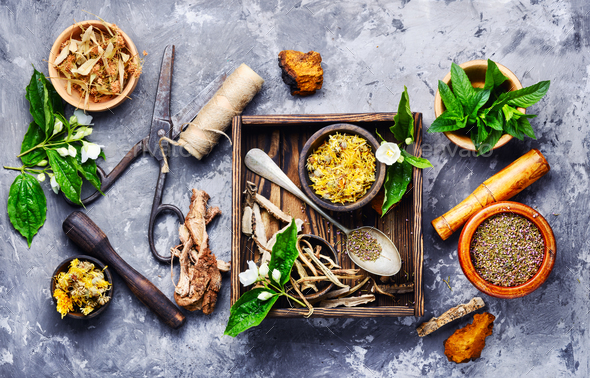 Natural medicine, herbs and plant Stock Photo by Nikolaydonetsk ...