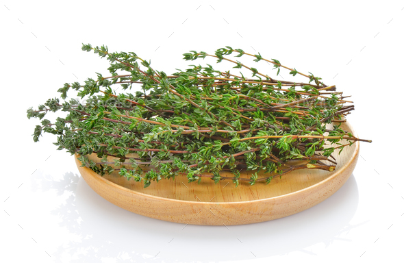 Thyme herb on white background - Stock Photo - Images