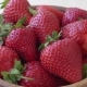 Ripe Red Strawberries on the Turntable - VideoHive Item for Sale