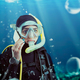 Diver in wetsuit and diving gear, underwater view - PhotoDune Item for Sale