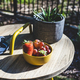 Drink and fruit on a table in the garden. - PhotoDune Item for Sale