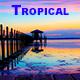 Tropic Dancing