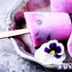 Ice cream with taste of flowers - PhotoDune Item for Sale