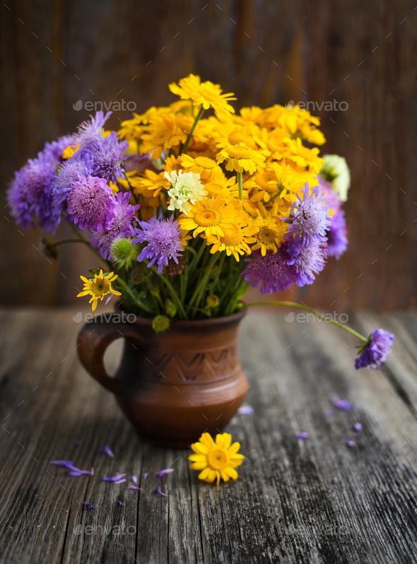 Bouquet of wildflowers (Anthemis tinctoria and Knautia arvensis) - Stock Photo - Images