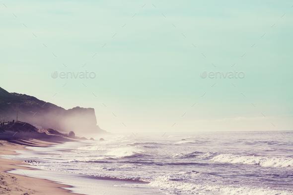 Pacific coast - Stock Photo - Images