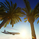 Airplane Flying Over Tropical Palm Tree - VideoHive Item for Sale