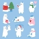 Christmas White Bear Vector Animal Cute Beauty