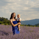 Family in Lavender at the Sunset - VideoHive Item for Sale