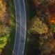 Aerial of Car Driving Through Sunny Autumn Forest - VideoHive Item for Sale